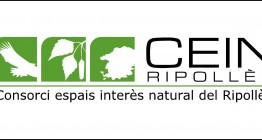 logo_CEIN.jpg