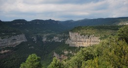 paisatge-pla-castell